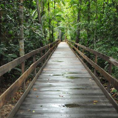 LAZER – Parque Natural oferece trilhas durante o feriado