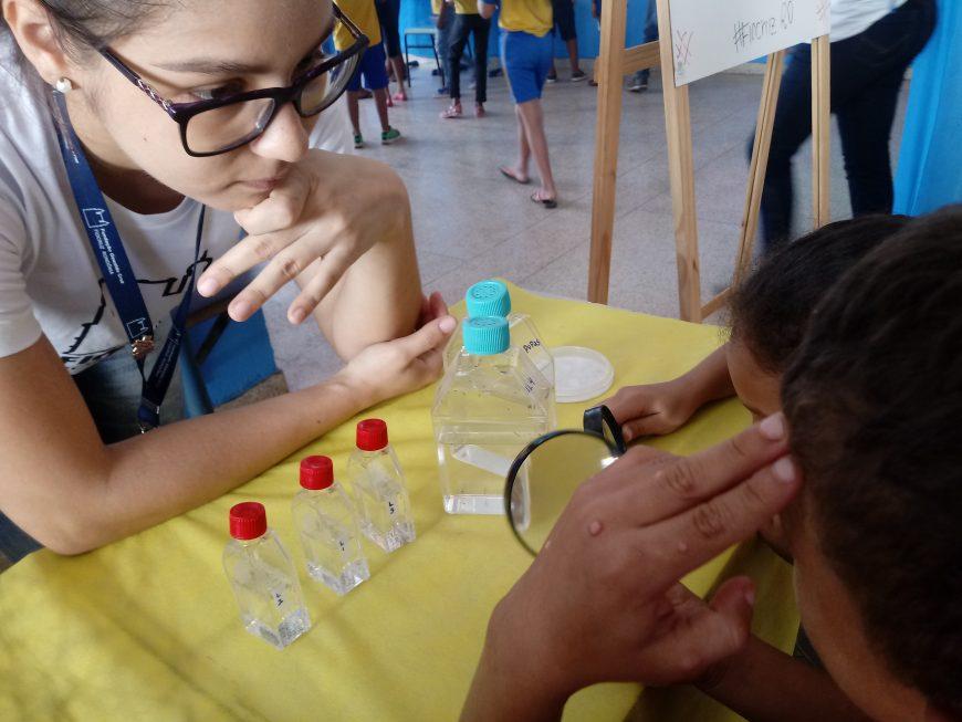 Pesquisadores e estudantes da rede municipal se unem para combater o mosquito Aedes em Porto Velho