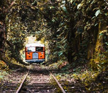 Memorial Rondon está na rota do passeio de litorina e é atrativo para visitação turística