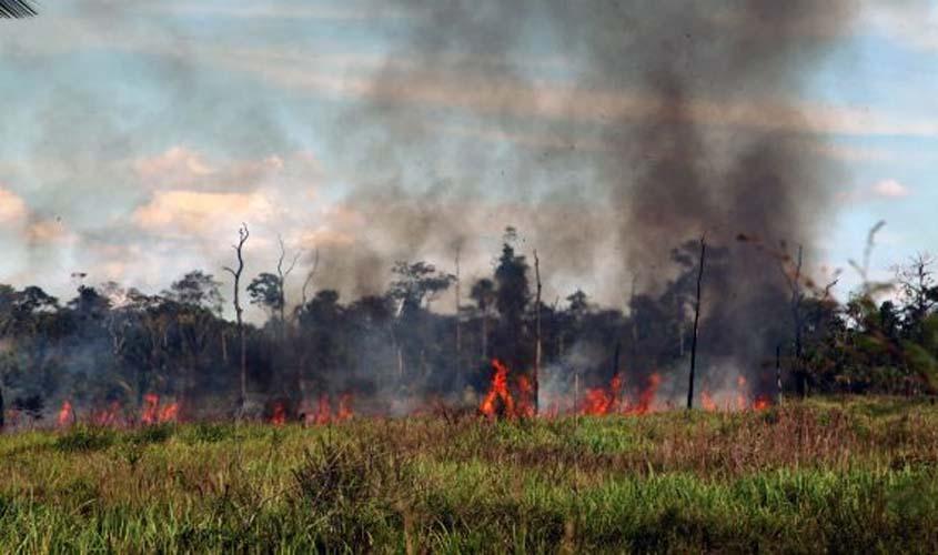 Cooperação visa fiscalização de desmatamento e incêndios em Rondônia