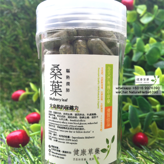 桑葉100顆膠囊 Mulberry Leaves 100 Capsules
