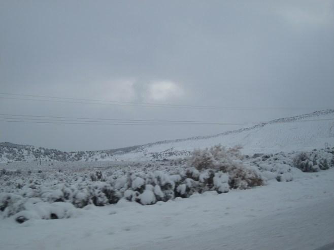 Snow Storm on Highway 12