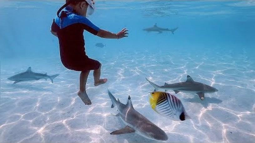 Is It Safe To Swim In Tahiti