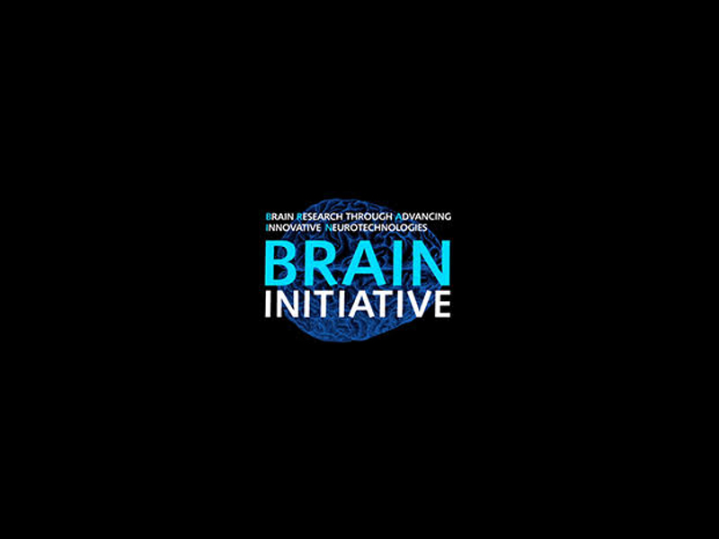 Brain Research Though Advancing Innovative Neurotechnologies
