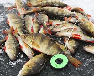 Жилет рыболовный Fishpond Vaquero Waxed Canvas