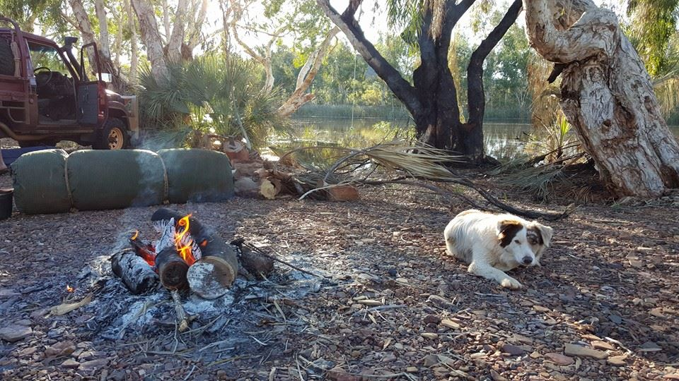 Camping in a gorge in Red Dog country.