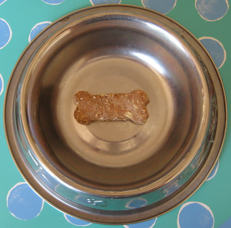 dogbiscuit