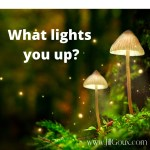 What Lights You Up
