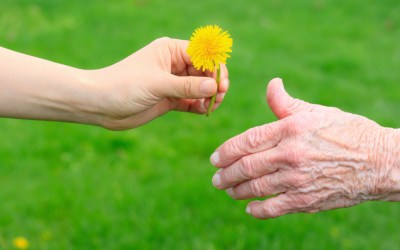 Gifts to Grandchildren and Your Estate Plan