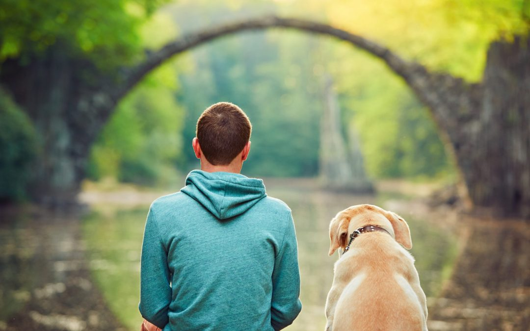 Include Your Pet In Your Estate Planning