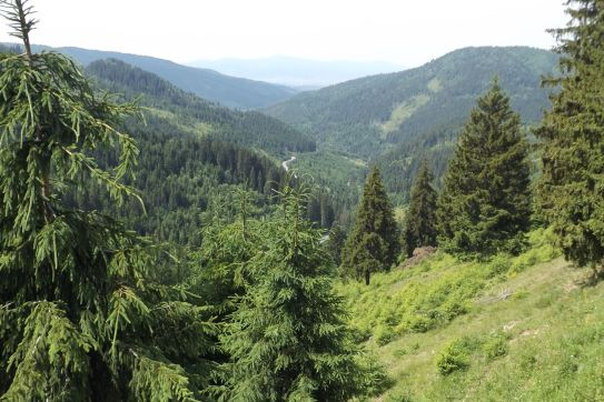 Bicaz Gorge (1)