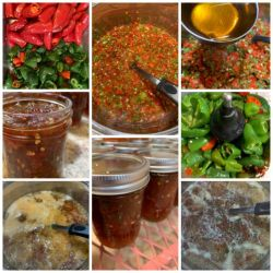 Hot Lotsa pepper relish