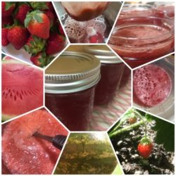 Strawberry Watermelon Jelly