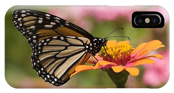 Monarch Butterfly Zinnia Phone Case