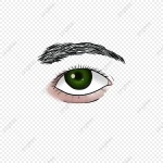 pngtree rough brother is god male eyes png image 6187646