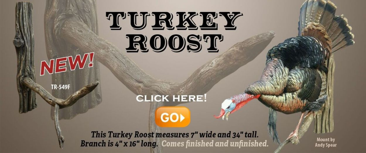 turkey roost slide