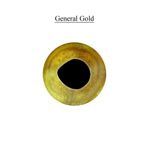 GENERAL PURPOSE GOLD