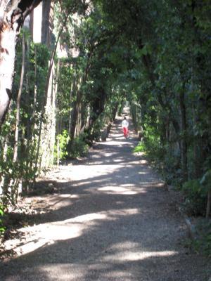 1222 Long Path