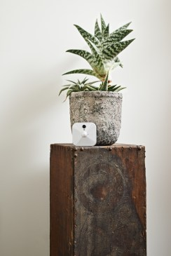 blink-planter-shelf