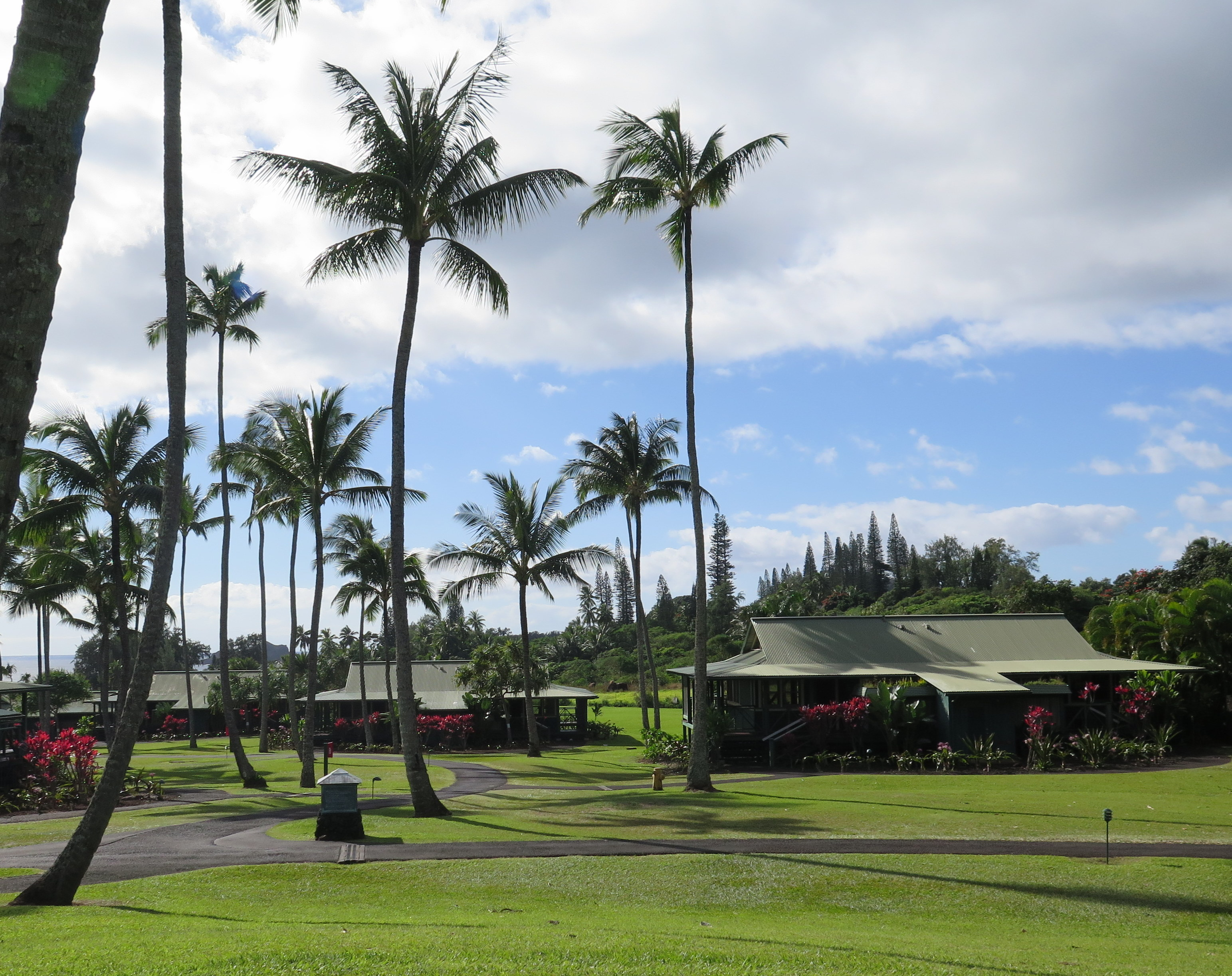 The Travaasa Hana is secluded and beautiful; a great wedding spot on Maui.