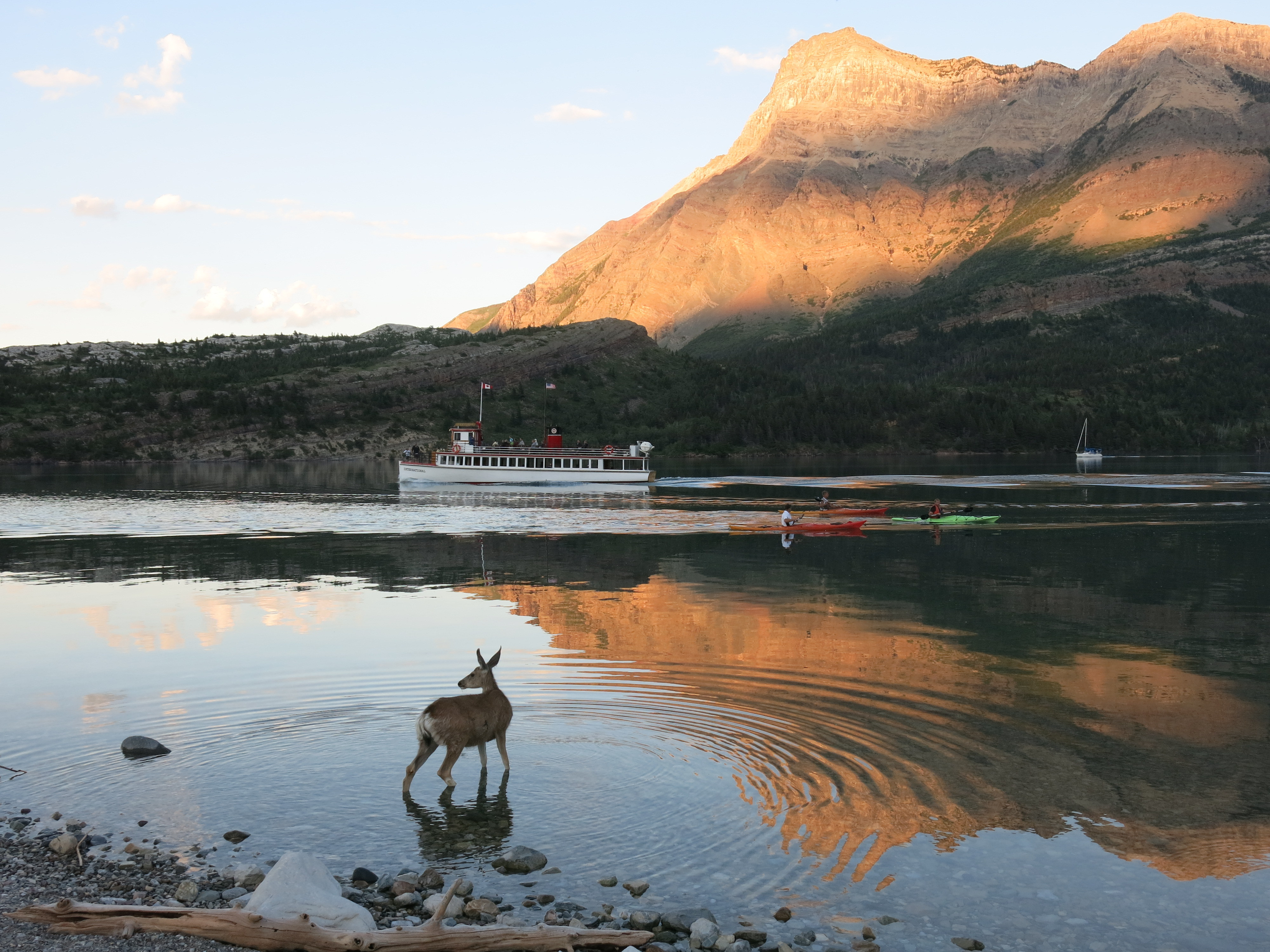 Waterton Lakes National Park in Alberta should be on every Canadian's bucket list.