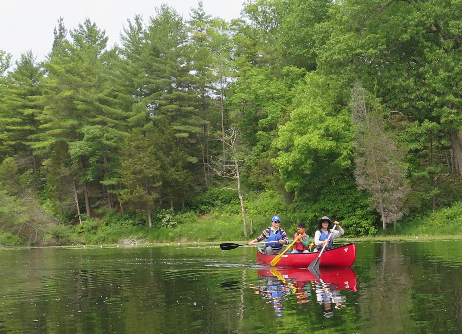 A family takes in a canoe trip in Pinery Provincial Park, just south of Grand Bend. JIM BYERS PHOTO