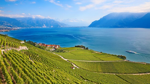 A Eurail train is an ideal way to see the vineyards lining Lake Geneva in Switzerland.