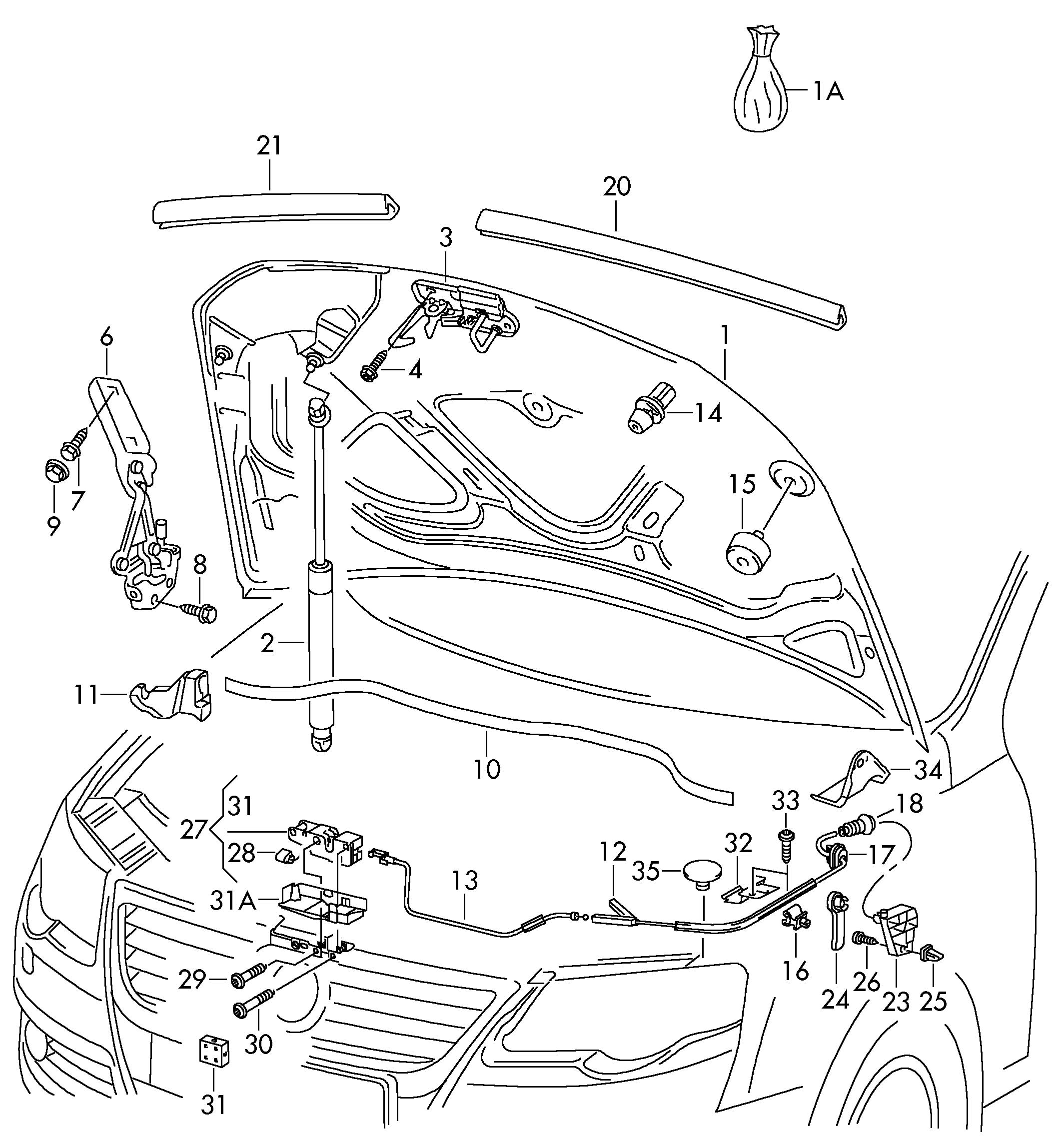 wiring diagram database  volkswagen hood