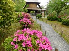 Kyoto Arashiyama 023