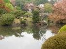 Tokyo Garden 016