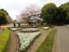 Tokyo Garden 028