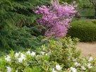 Tokyo Garden 040