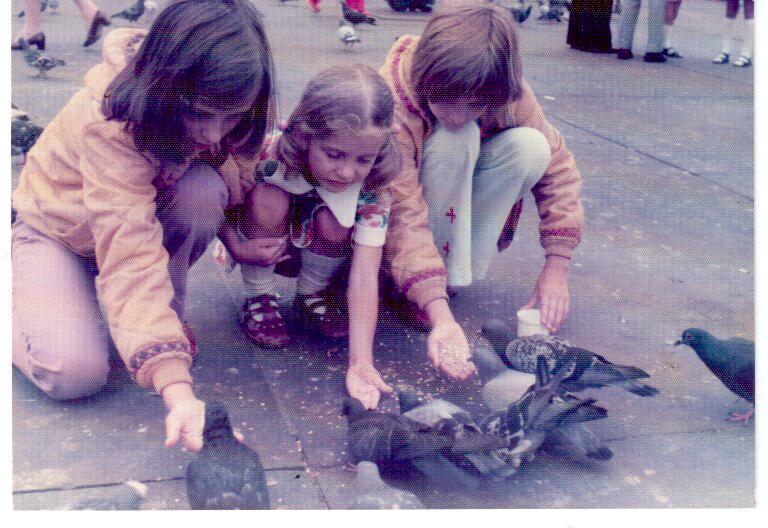 London 8.75 pigeons