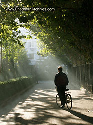 Bicycle_in_sunlight
