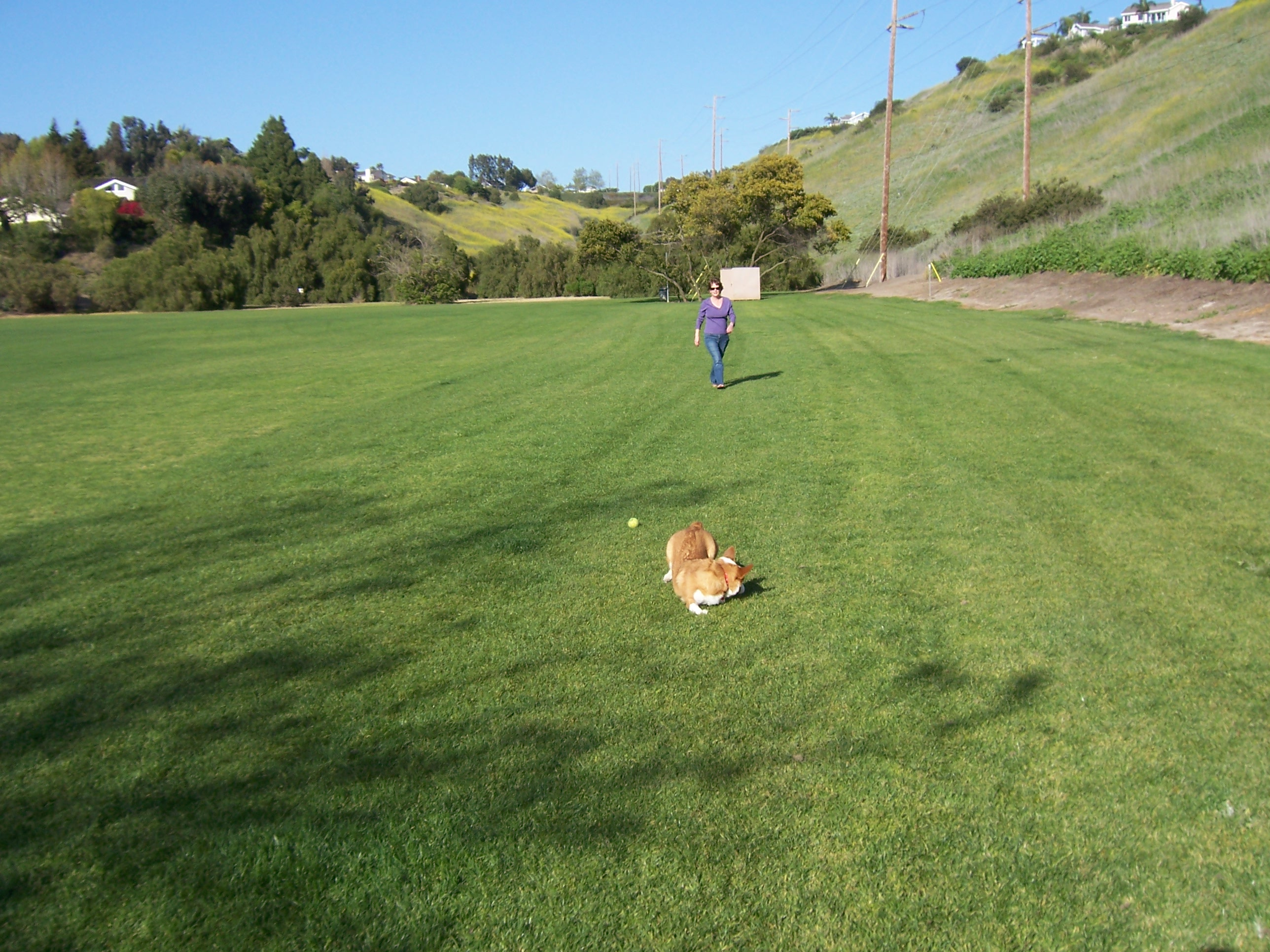 lando at park