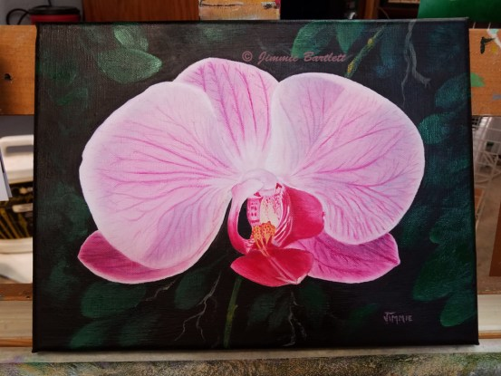 Pink Orchid painting