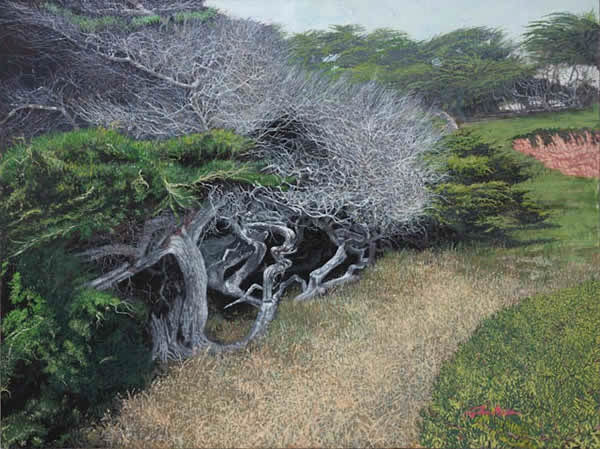 coastal_cypress_trees_Giclee.jpg