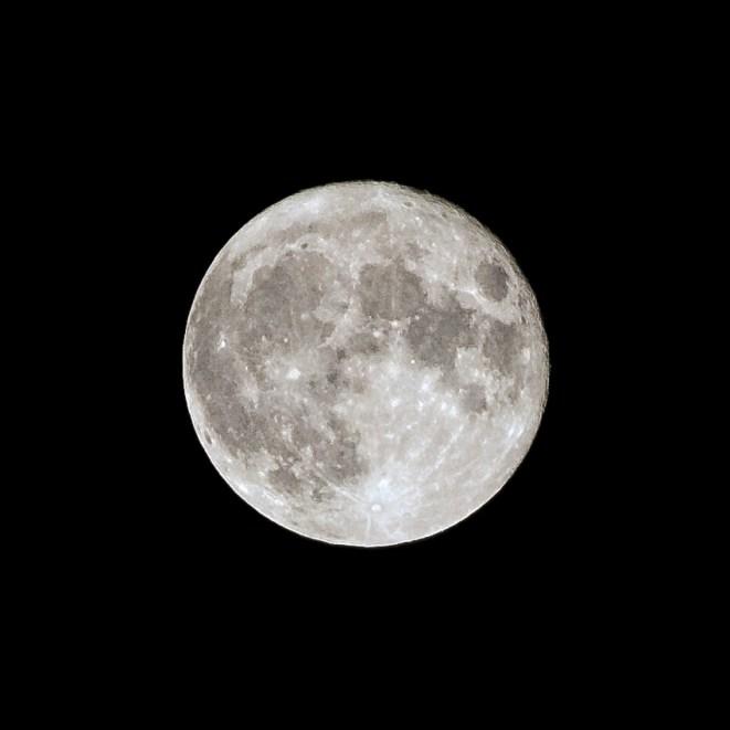 - Fullmåne -