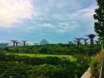 Supertree Gardens