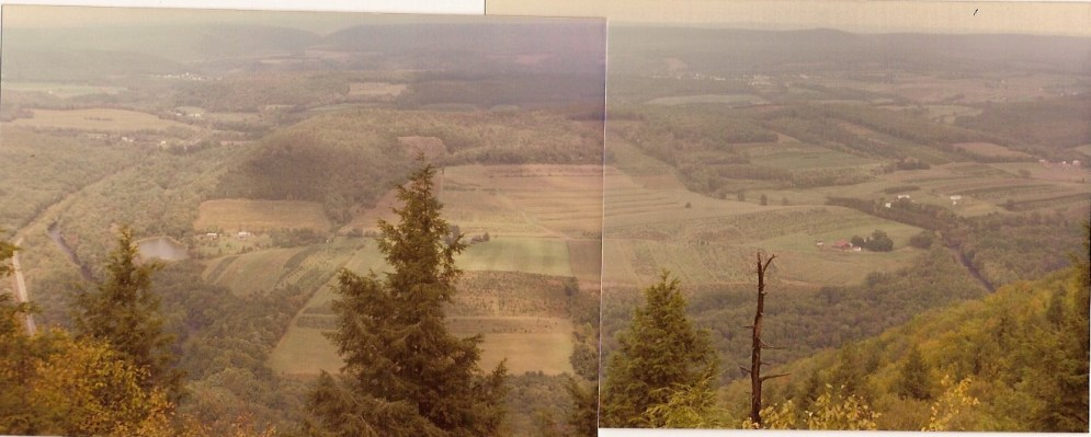View from Hawk Mtn 1982