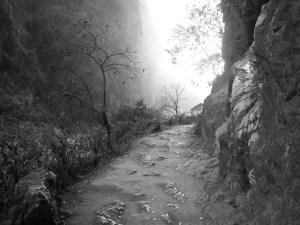 kensho path1