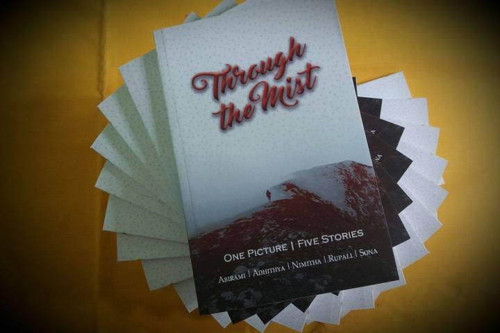 through the mist paperback