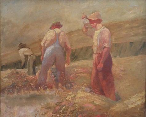 Water in fields