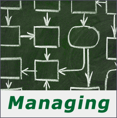 Managing organizations and processes.