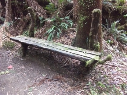 Rustic seat on Beauchamp Falls walking track