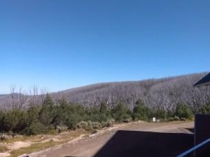 View from Gerratys