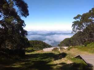 View from Mt Baw Baw village