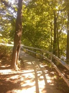 Part of Riverside trail