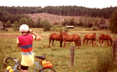 Don-Trantow-LAW-Director-taking-photos-of-horses-at-GEAR-WEST-Seattle-WA-1983