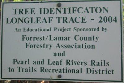 Tree-identification-sign-Longleaf-Trace-MS-2015-06-11